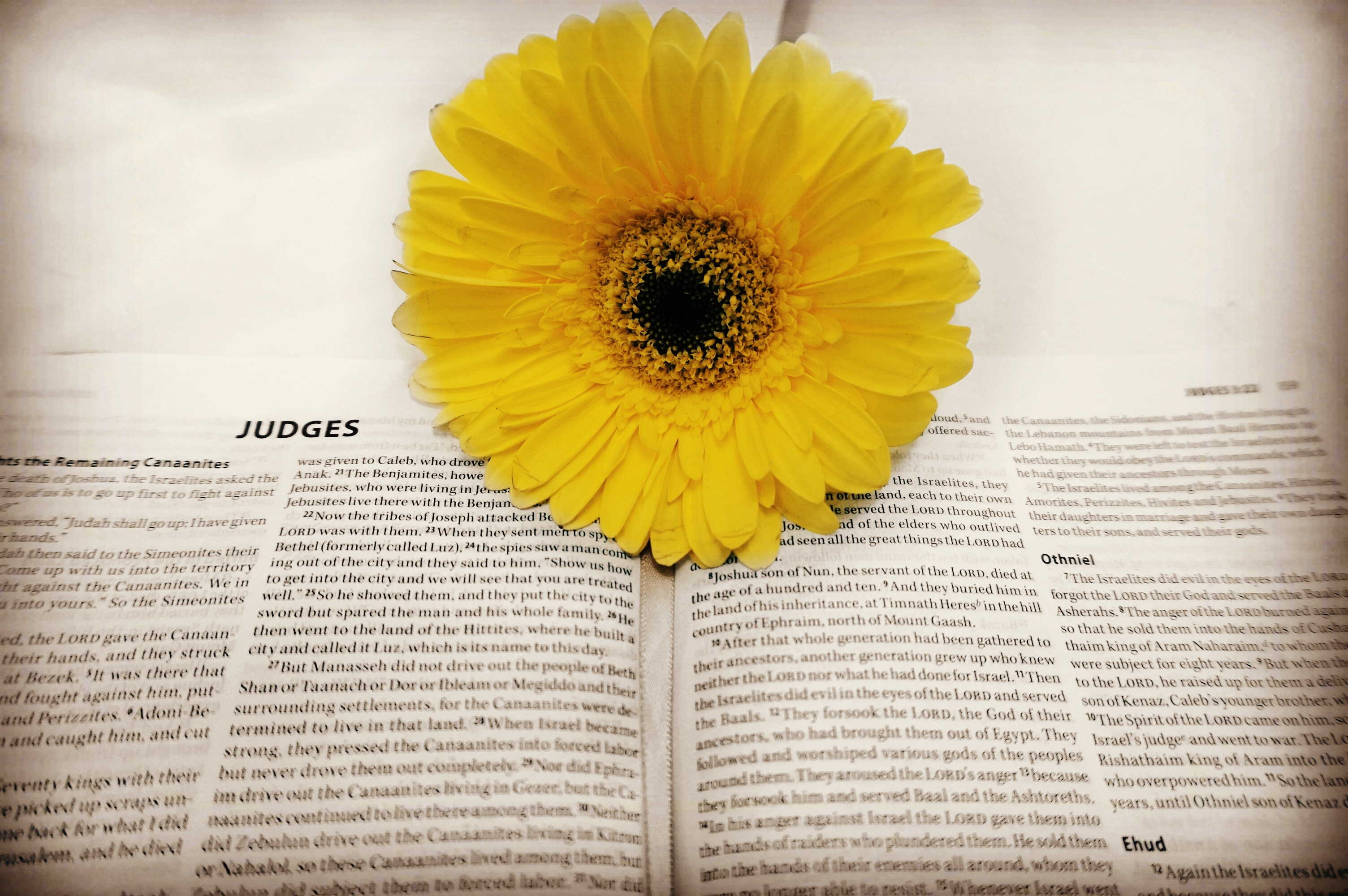 The Book Of Judges: Gods Display Of Neverending Mercy